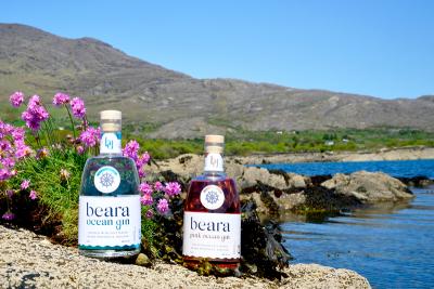 Beara Ocean Gin Image