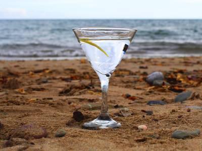 Beara Martini Cocktail