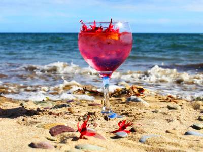 perfect serve beara pink gin and tonic